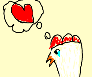 A chicken is desperate for love