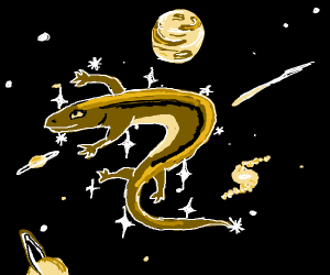 Skink in space