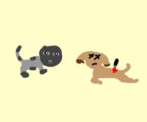 Cat Assassinates Dog