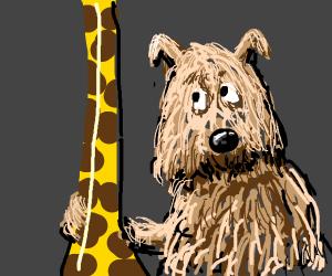Dog and giraffe are BFFs