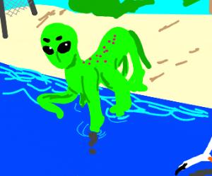 Alien at The beach