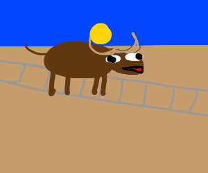 Moose on a Railroad