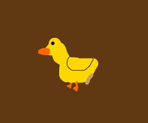 duck in mud