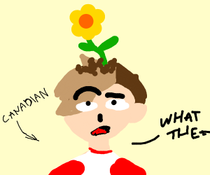 Confused Canadian used as flowerpot.
