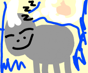 Rhinoceros dreaming of an Onion