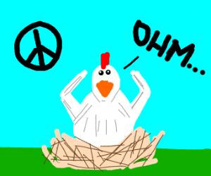 Peaceful chicken