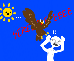 bird murders guy as sun looks on