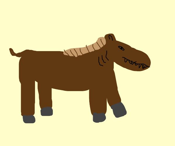 horse shark hybrid