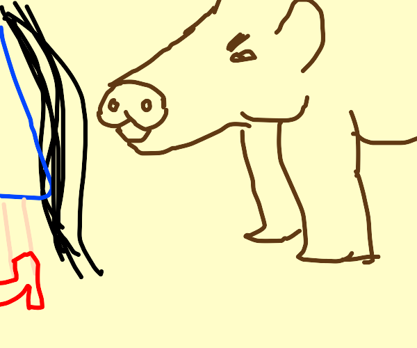 Boar is angry about a girl's hair