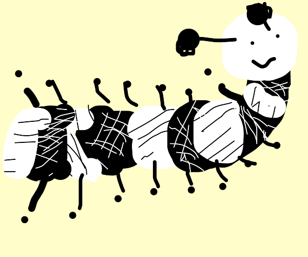 Black and white colored bugs with long necks