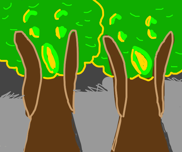 Scared trees