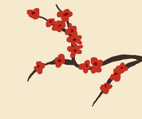 red flower branch
