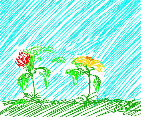 2 animate flowers sliming at one another