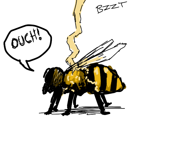 A bee getting struck by lightning :(