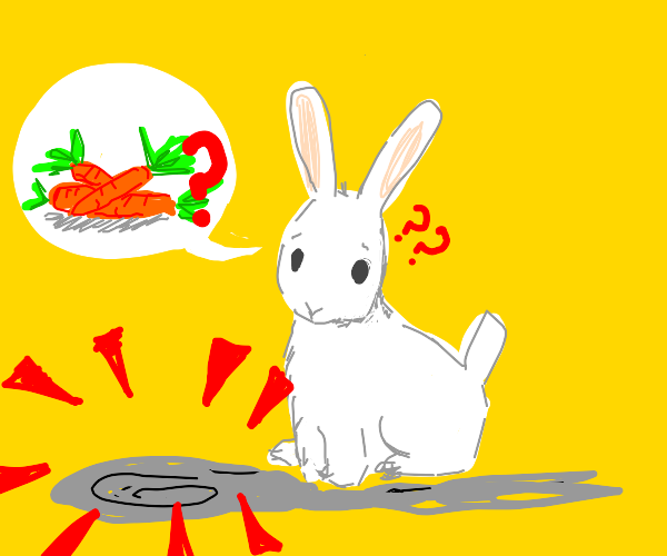 Rabbit has no carrots