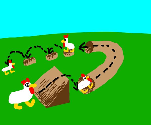 Chicken parkour