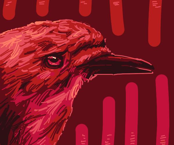 Imposing, scarlet kingfisher
