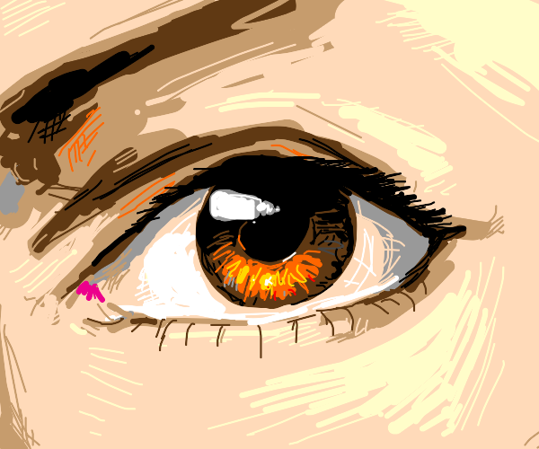 close up of brown eye