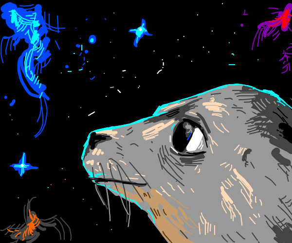 Seal in space