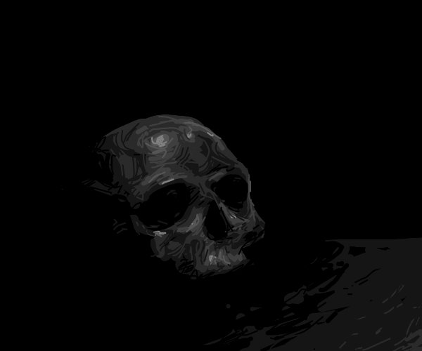 a skull in shadow