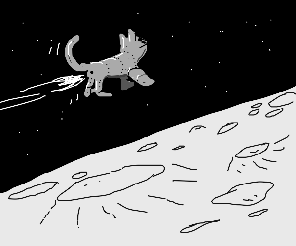 a robot cat spaceship