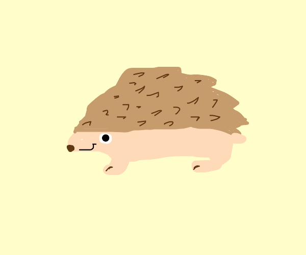 hedgehog smiles at you