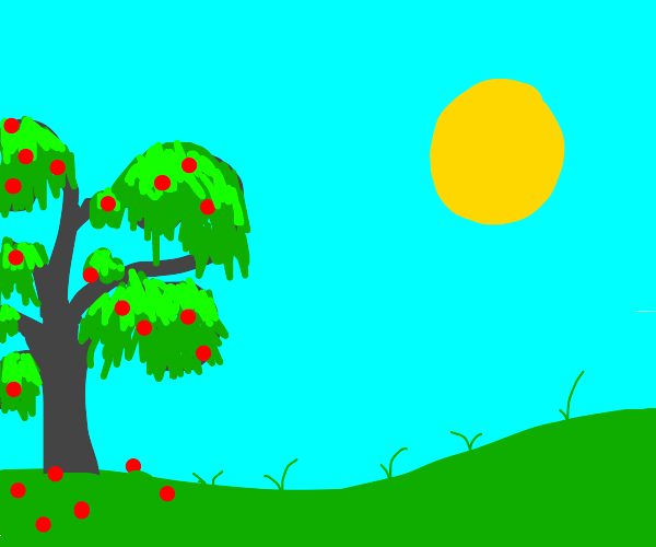 Tree on grass with sun