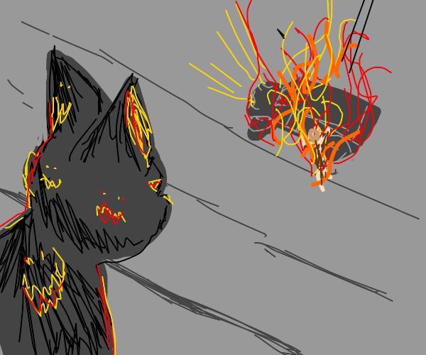 black Satan cat looking at man