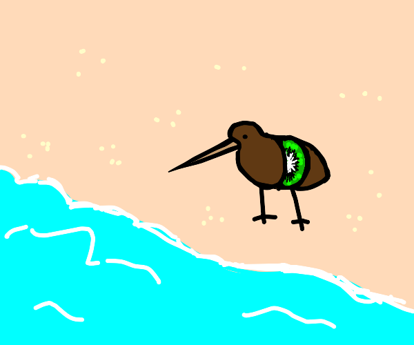 cursed kiwi bird vibin over an ocean