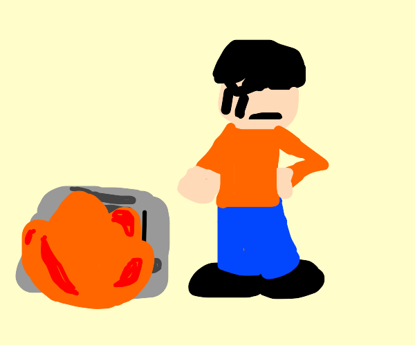 Person burns a toaster for they oppress bread