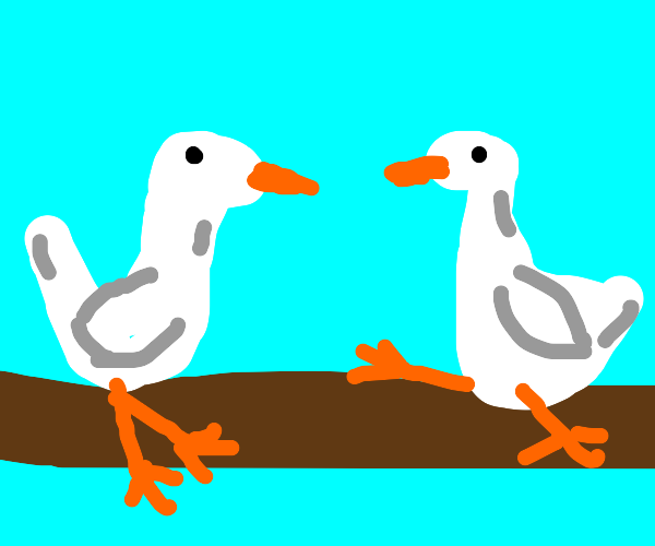 2 gooses sitting on wooden planks