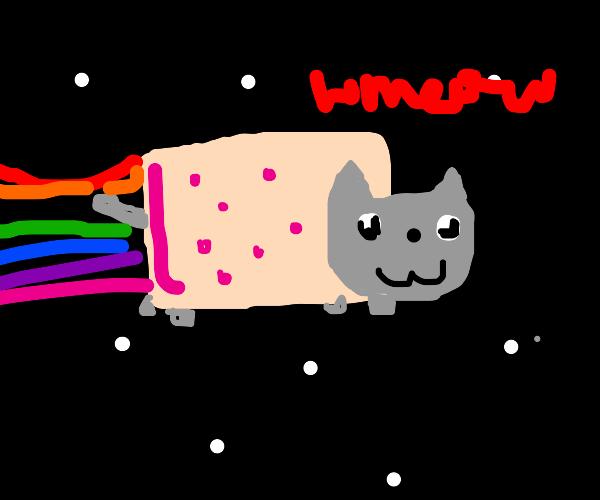 nyan cat! meowmeowmeowmeowmeowmeow