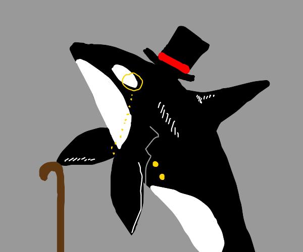 Historic Orca