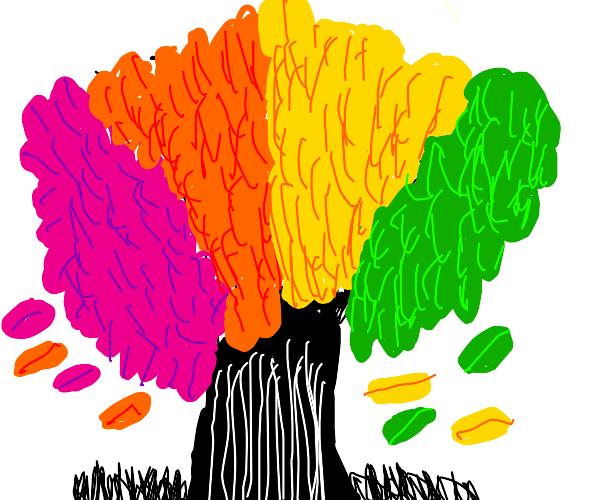 Rainbow Tree!