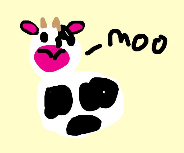 really cute, chubby cow saying moo