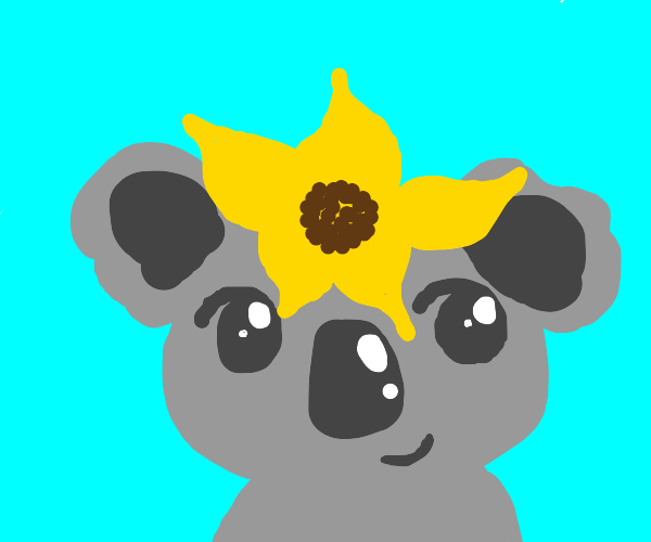 Koala with a sunflower on its head.