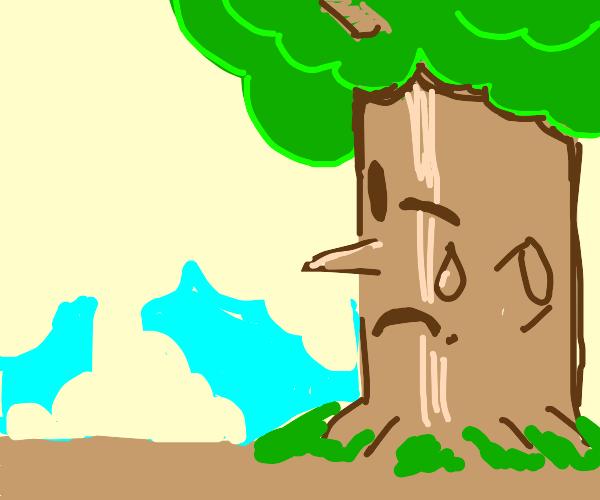 Sad trees