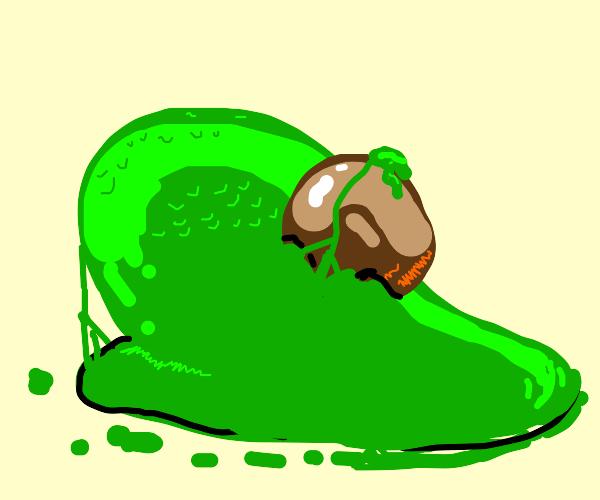 Melting avocado