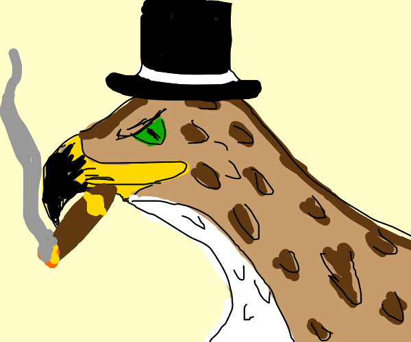 Hawk wearing a Top Hat