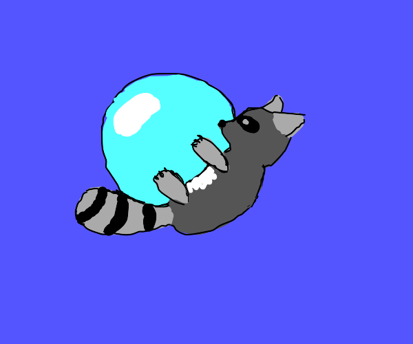 raccoon playing with bubbles