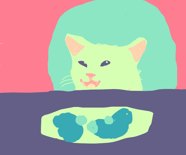 Cat at the dinner table