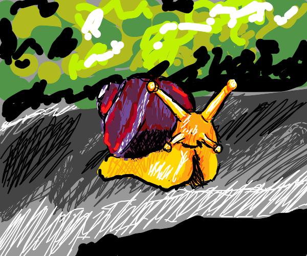 smug snail