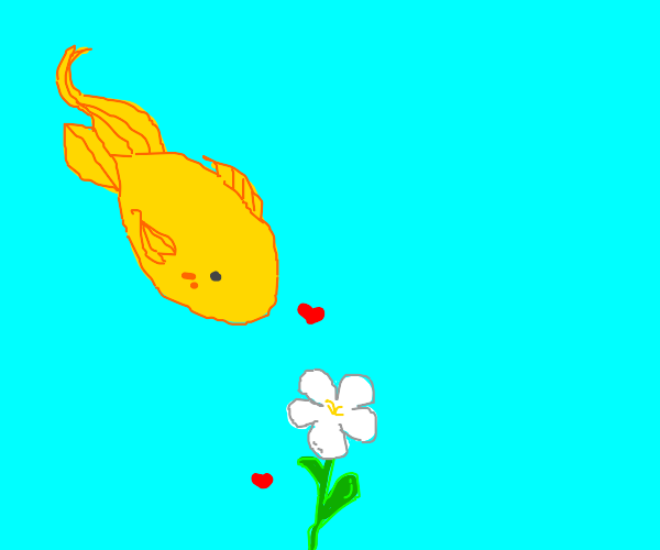 a fish is in love with a flower