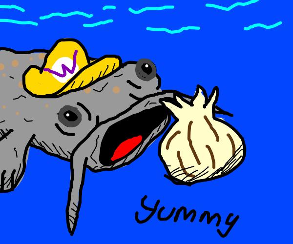 Catfish eating Garlic