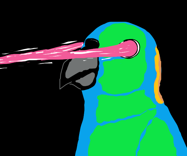 Parrot With Lasers Coming From Its Eyes
