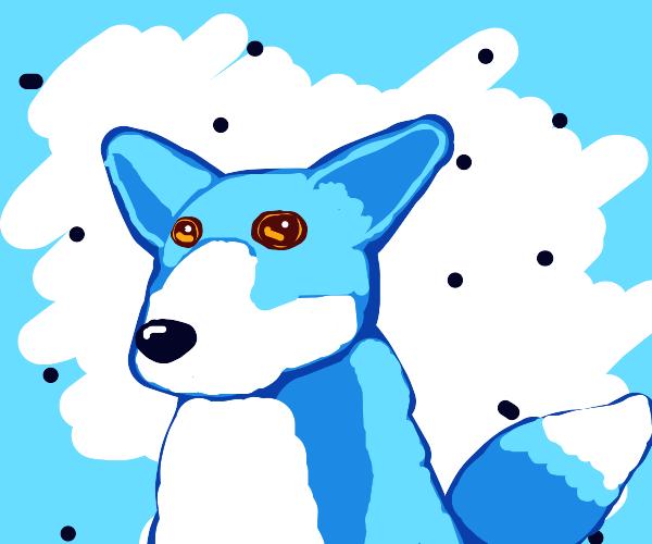 Cute blue fox