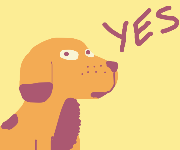 Puppy says yes