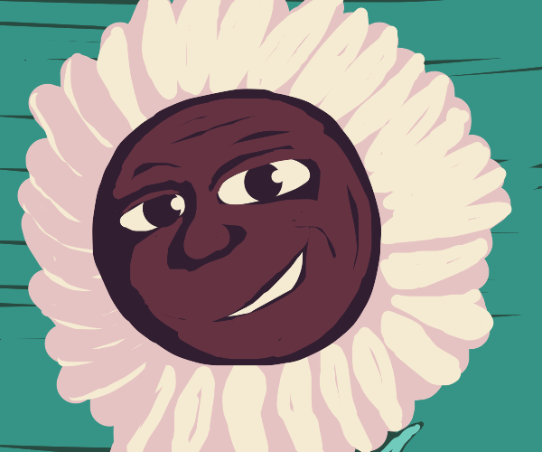 sunflower with a face