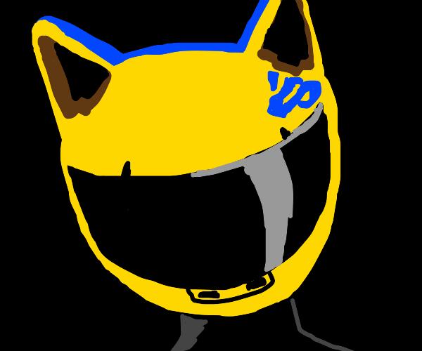 motorcycle helmet with cat ears