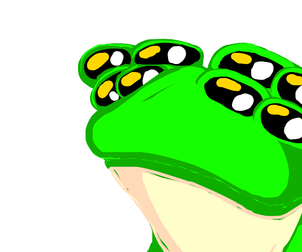 Frog with 8 long eyes
